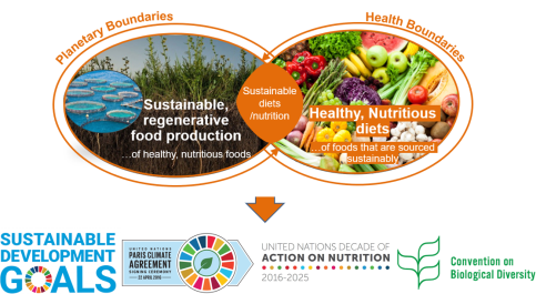 Sustainable Nutrition_Global Goals.PNG