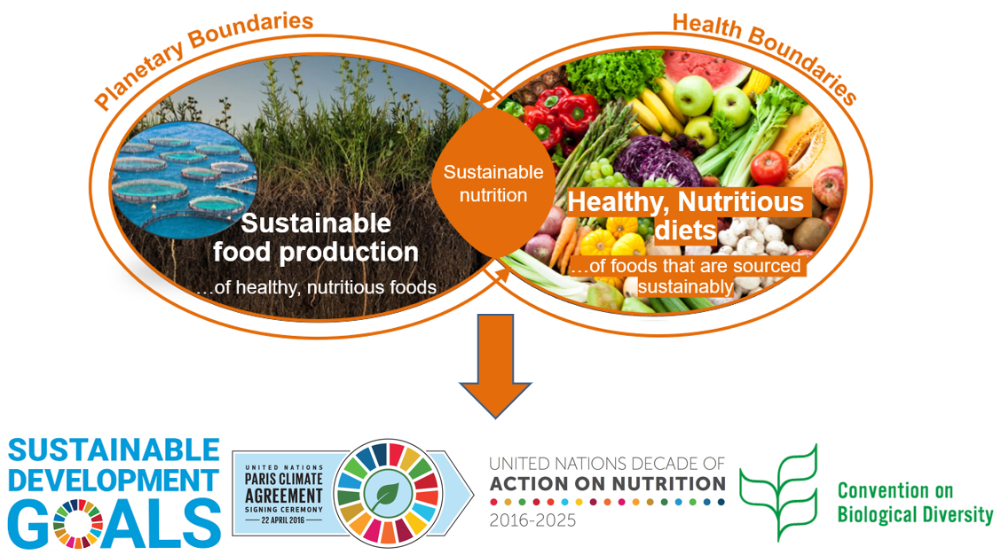 Sustainable Nutrition_Global Goals